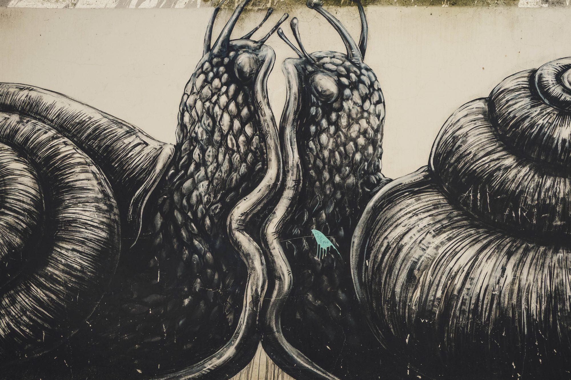 Escargots Amoureux - Lagos, Portugal