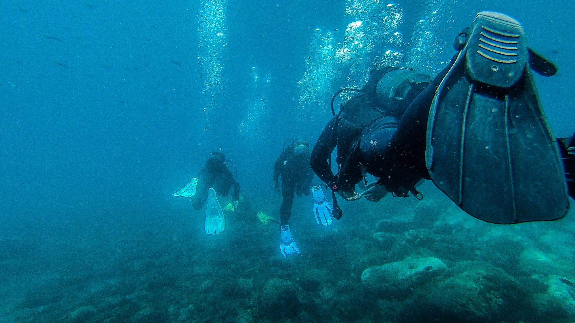 Cortège sous marin - Marina del Este, La Herradura, Espagne