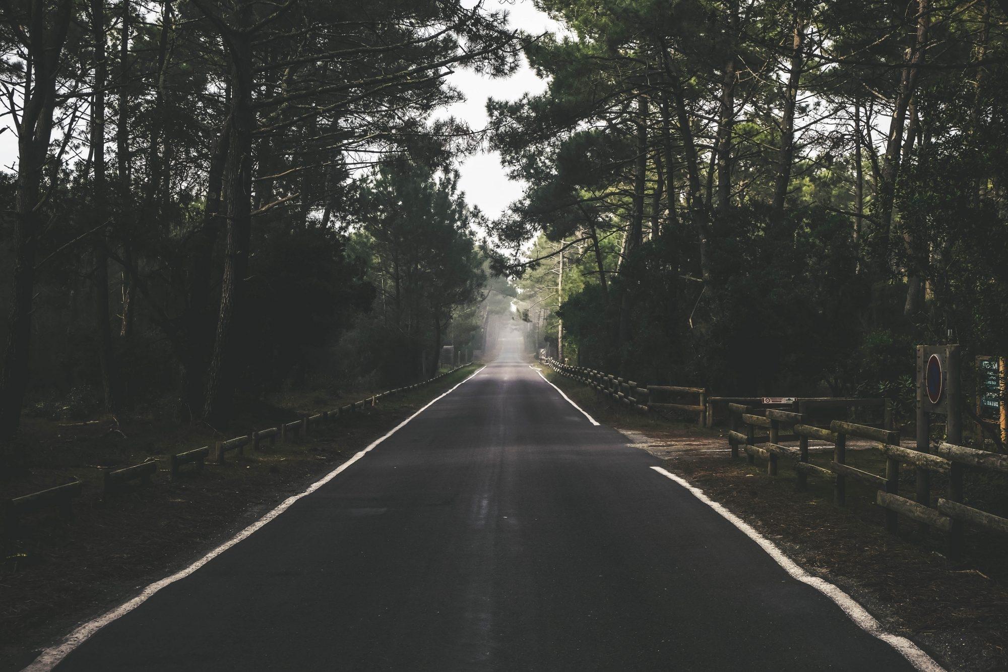 Les routes du Sud Ouest et des pins