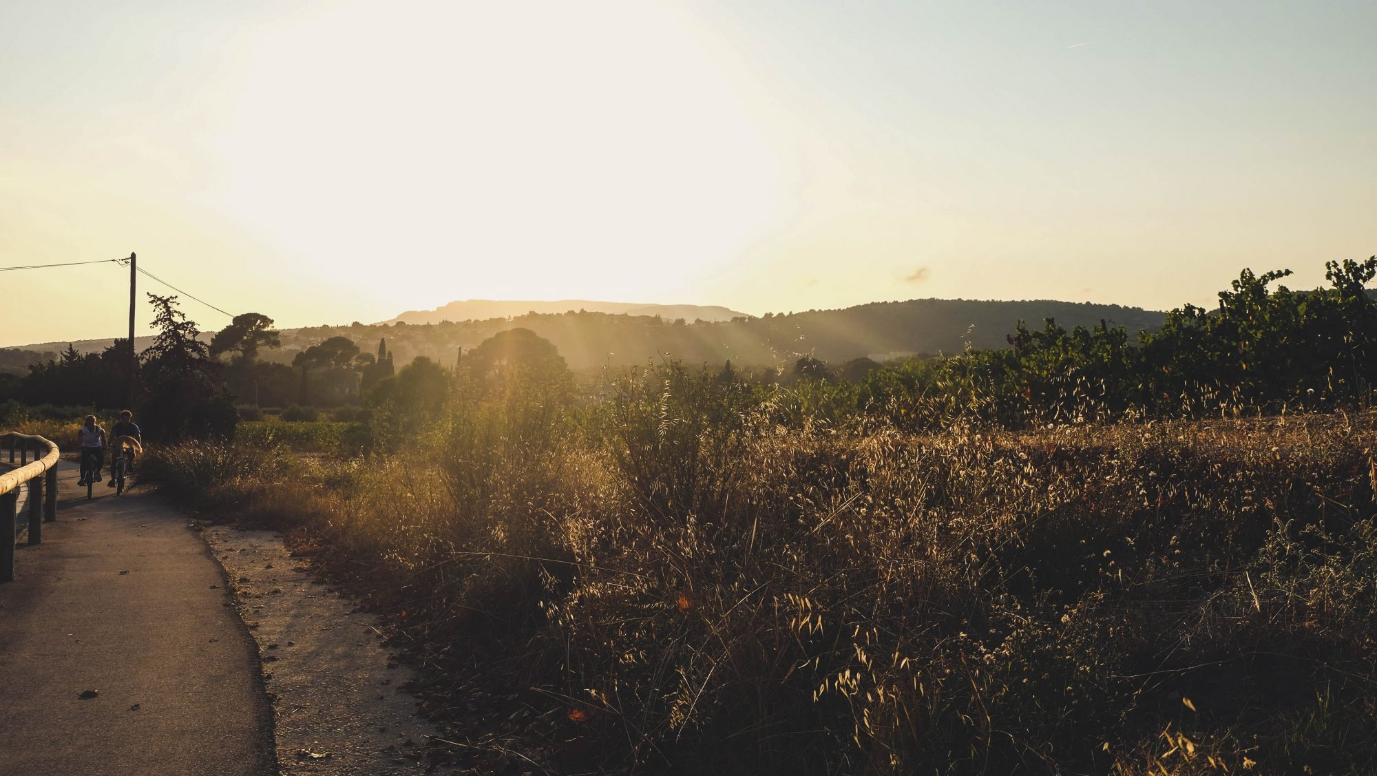 Coucher de soleil sur les vignes de Cassis