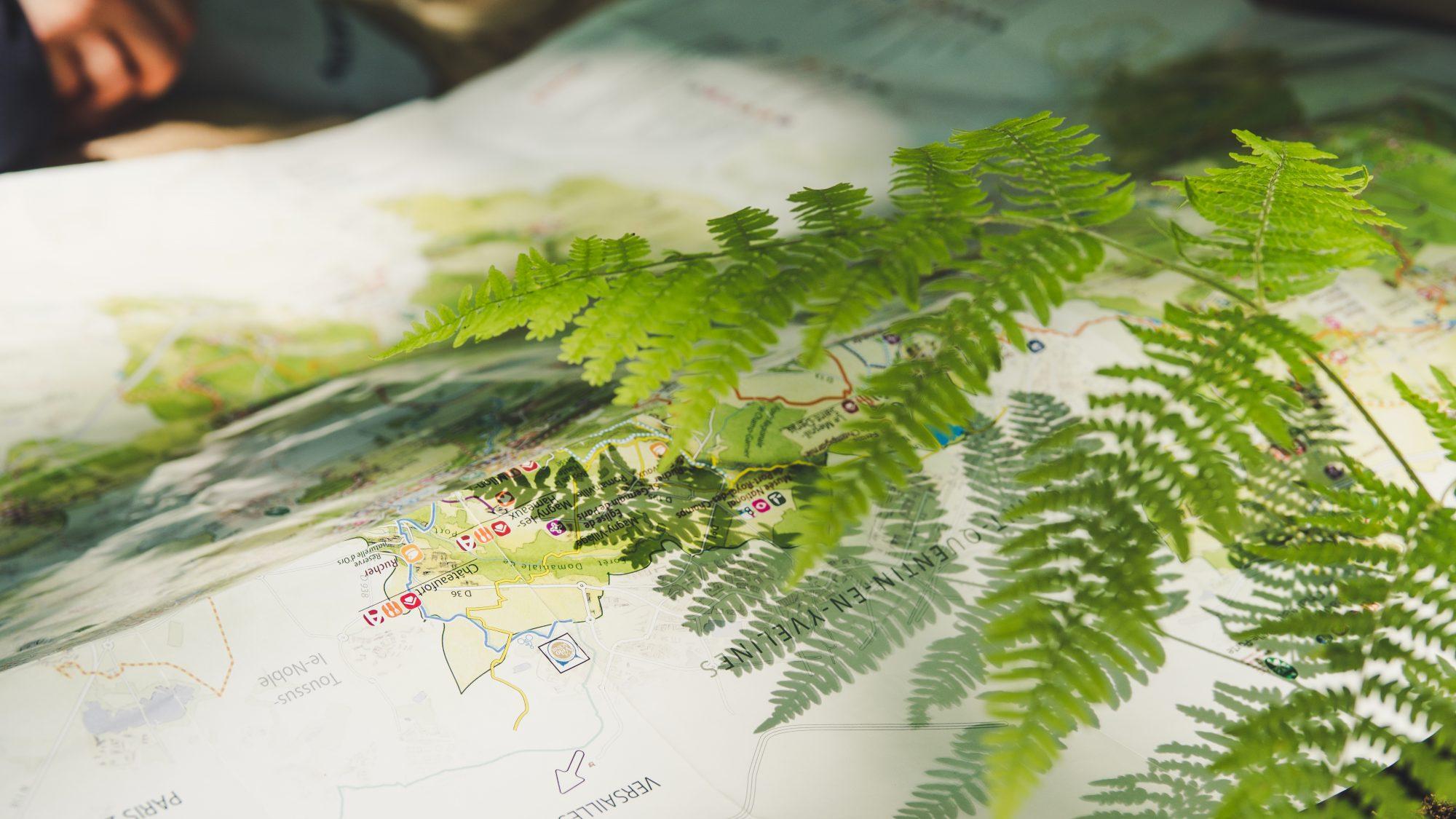 Sortie nature en Ile de France : Visiter la Vallée de Chevreuse