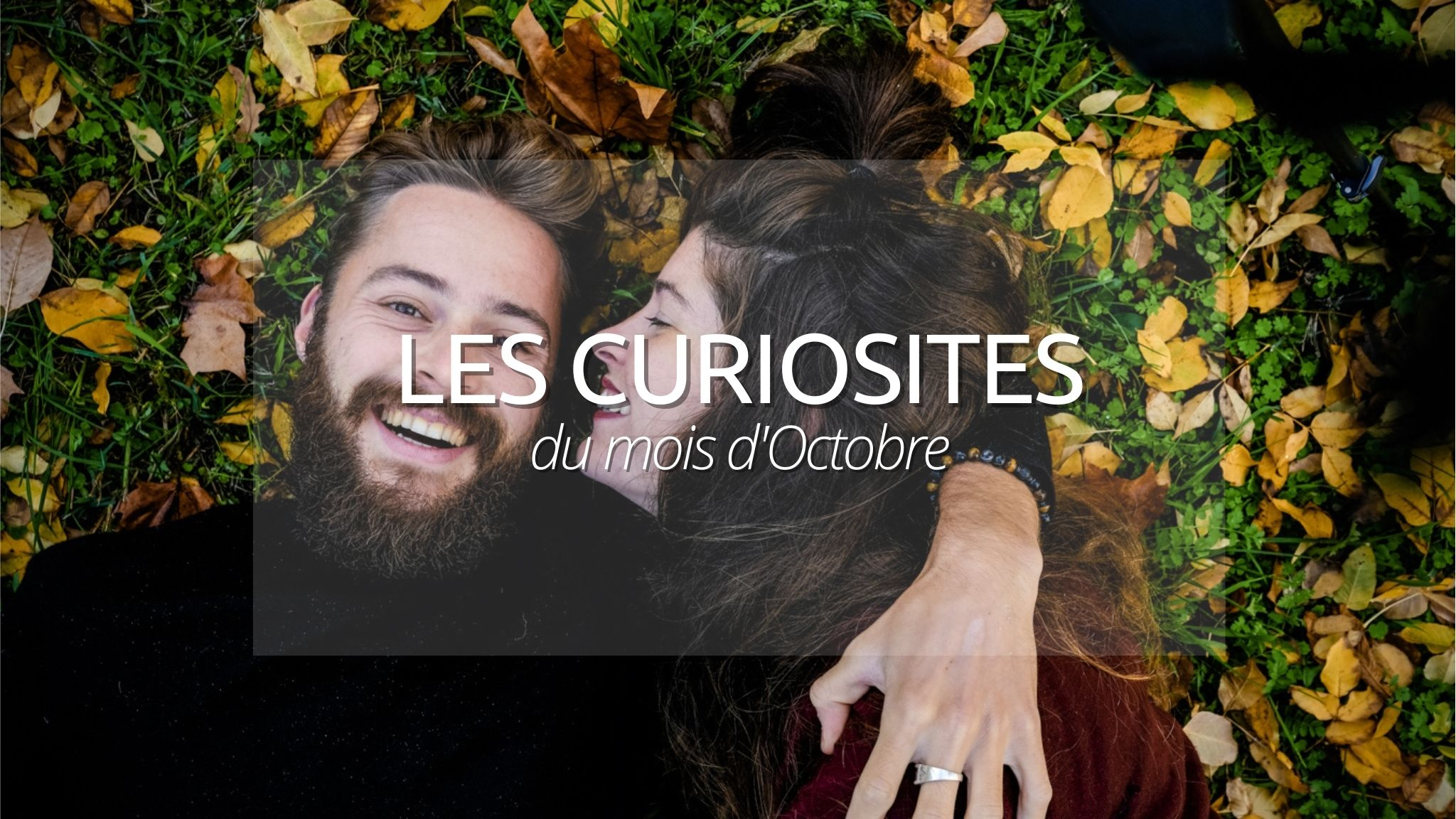 N°1 : Les curiosités d'Octobre