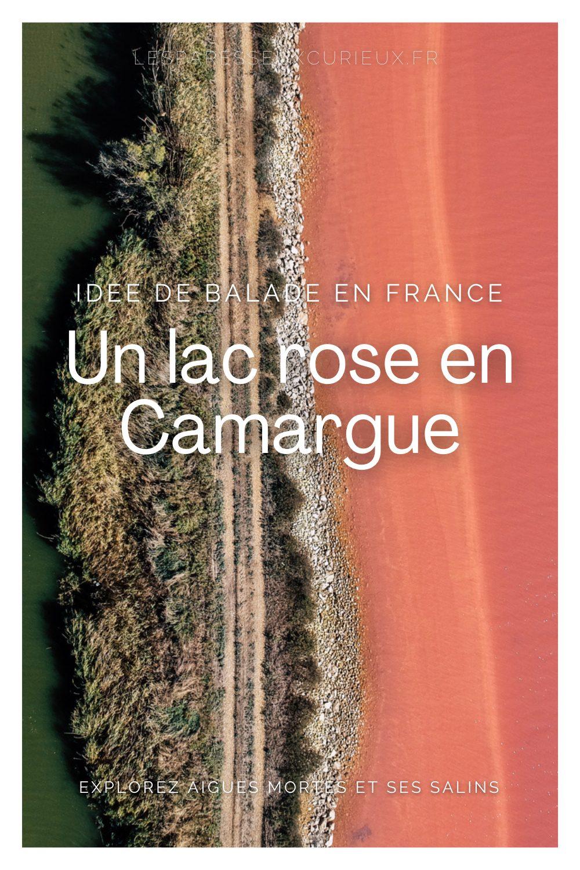 Pinterest lac rose de camargue