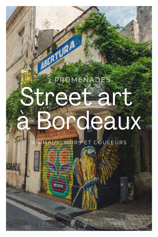 Pinterest Pin Street art Bordeaux