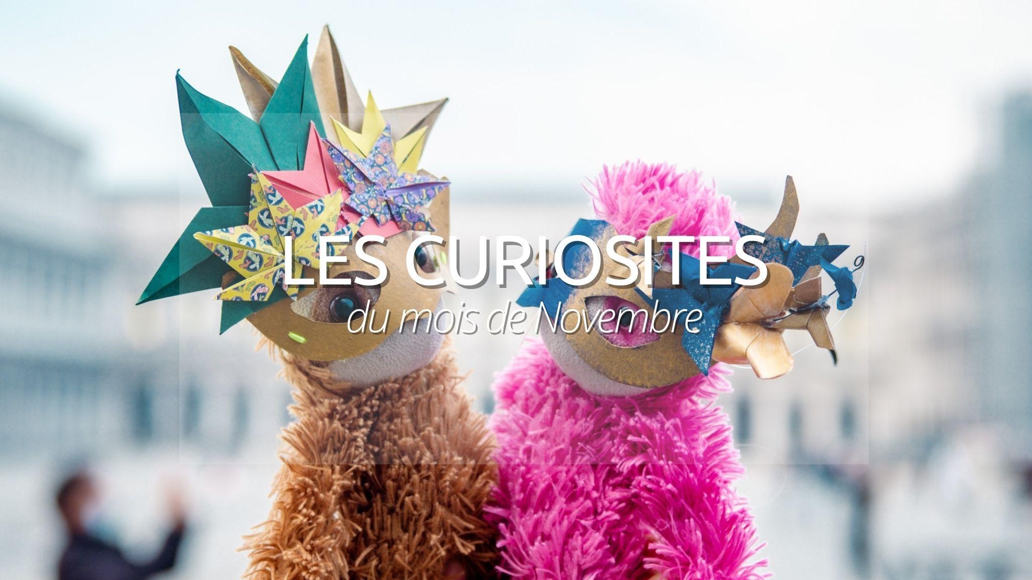 N°2 : Les curiosités de Novembre