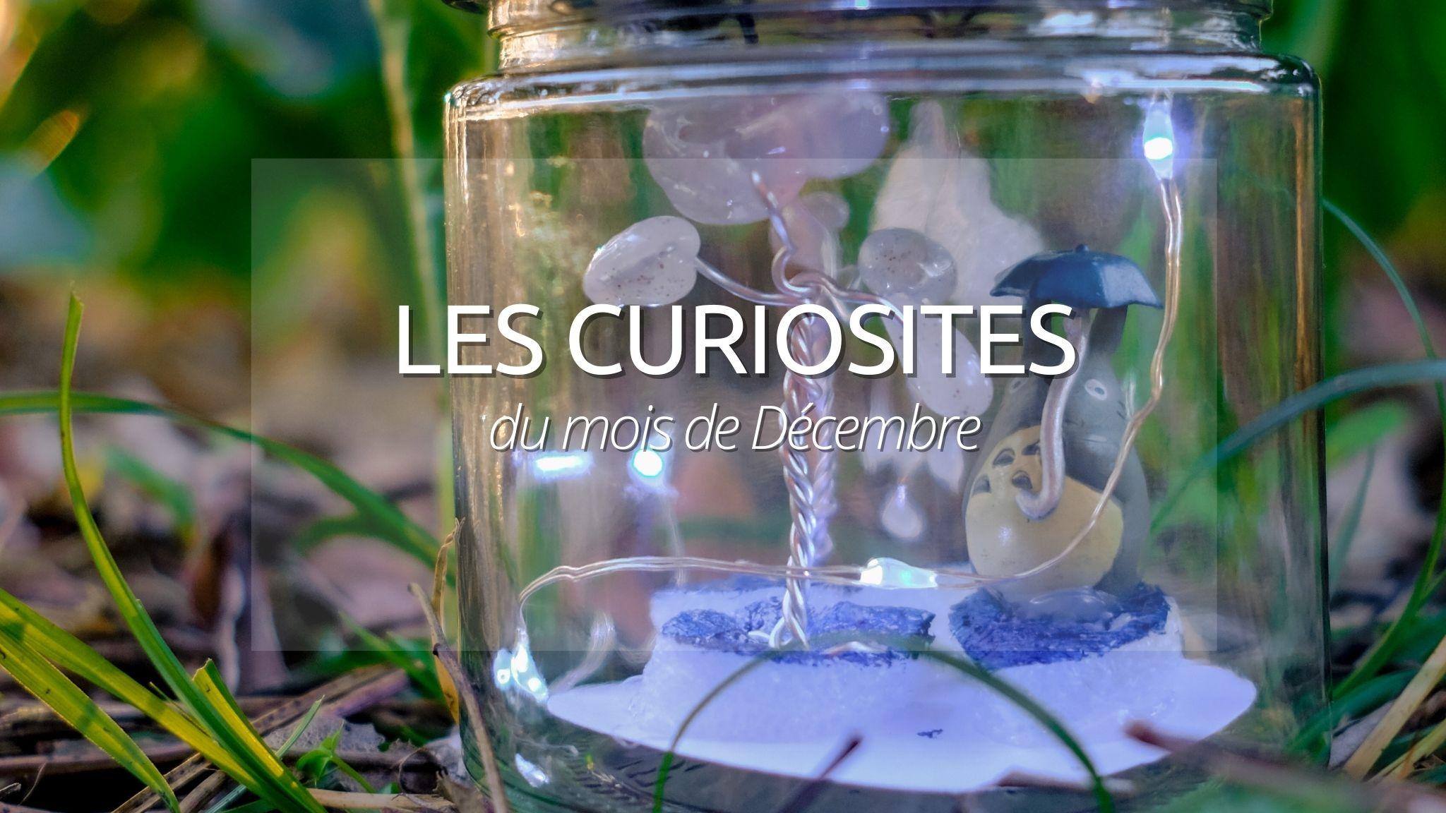N°3 : Les curiosités de Décembre