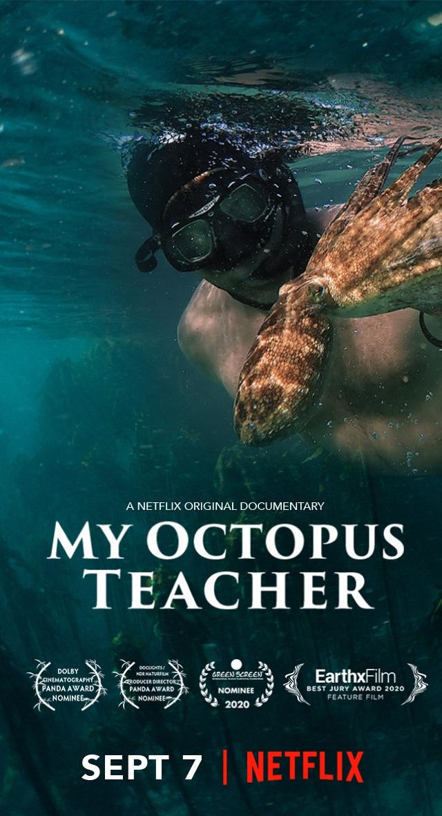 affiche film My Octopus Teacher