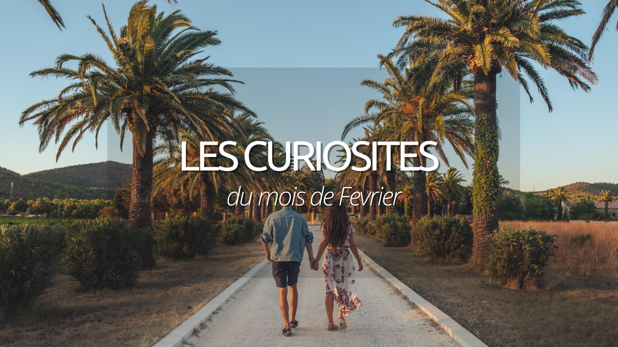N°5 : Les curiosités de Fevrier