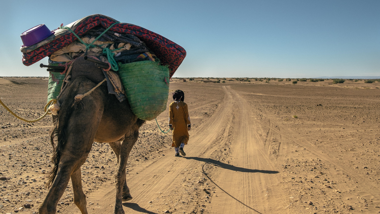 Bagages sur un chameau dans le desert du Maroc