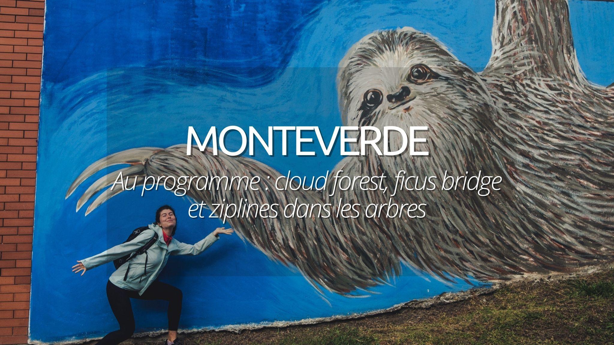 Visiter Monteverde : 2 jours dans les nuages à la recherche du quetzal perdu
